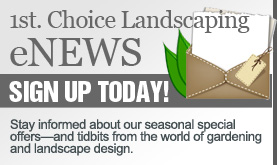 1st. Choice Landscaping eNews Signup Today - Stay informed about our seasonal offers and tidbits from the world of gardening and landscape design