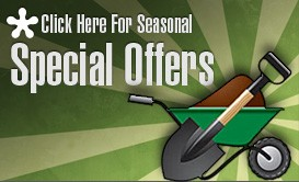 Click Here for Seasonal Special Offers